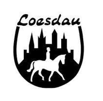 Pferdesporthaus Loesau